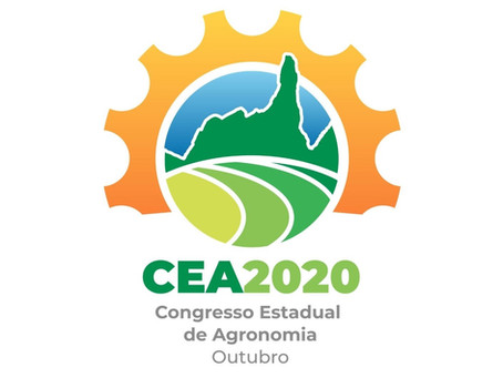 Organização Profissional de Congresso - IX CEA Online