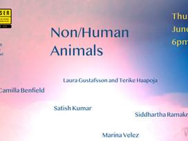 Cambridge LASER Talks   Non/Human Animals