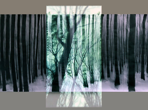 forest Project8.jpg