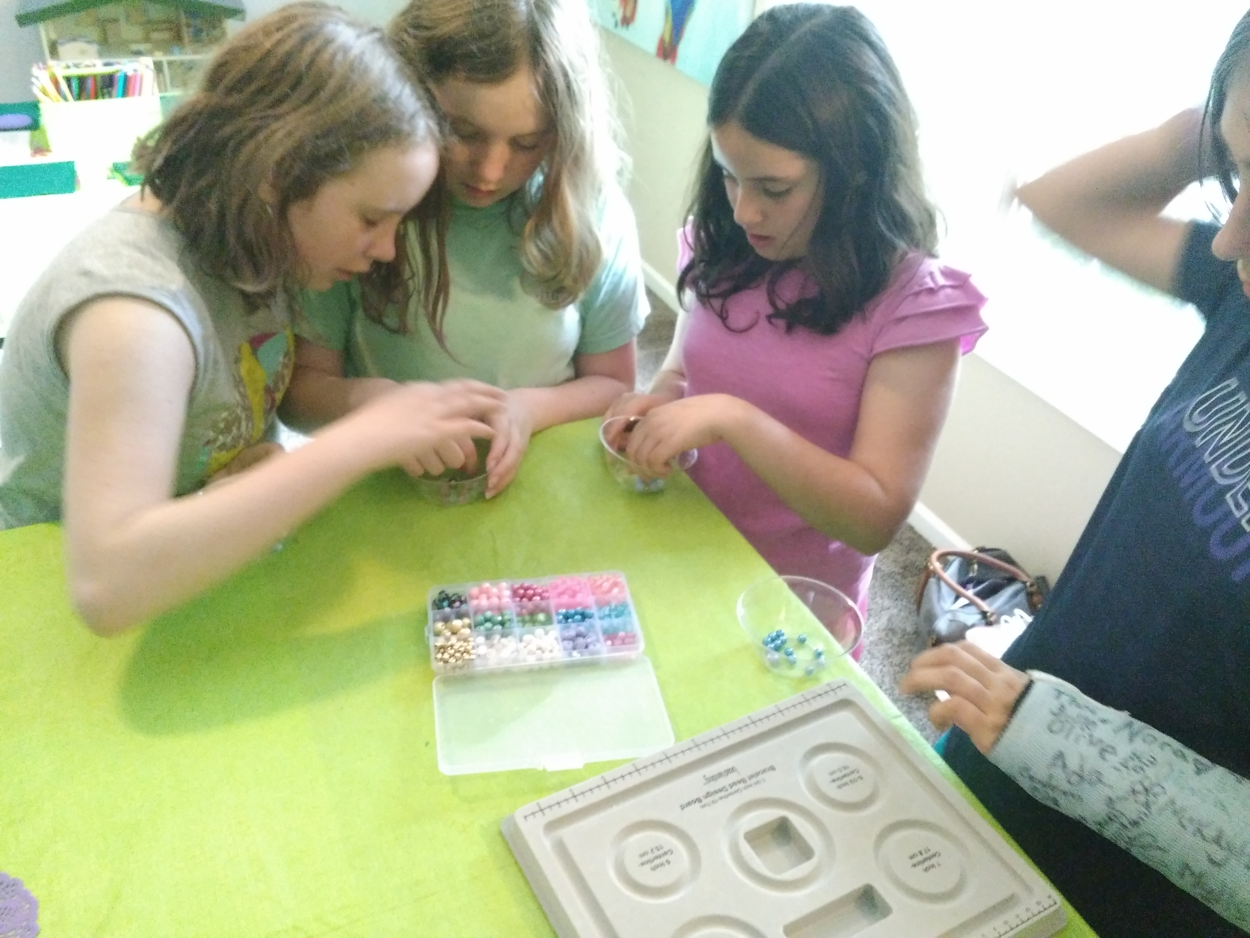 Girl Scouts Earn Badges