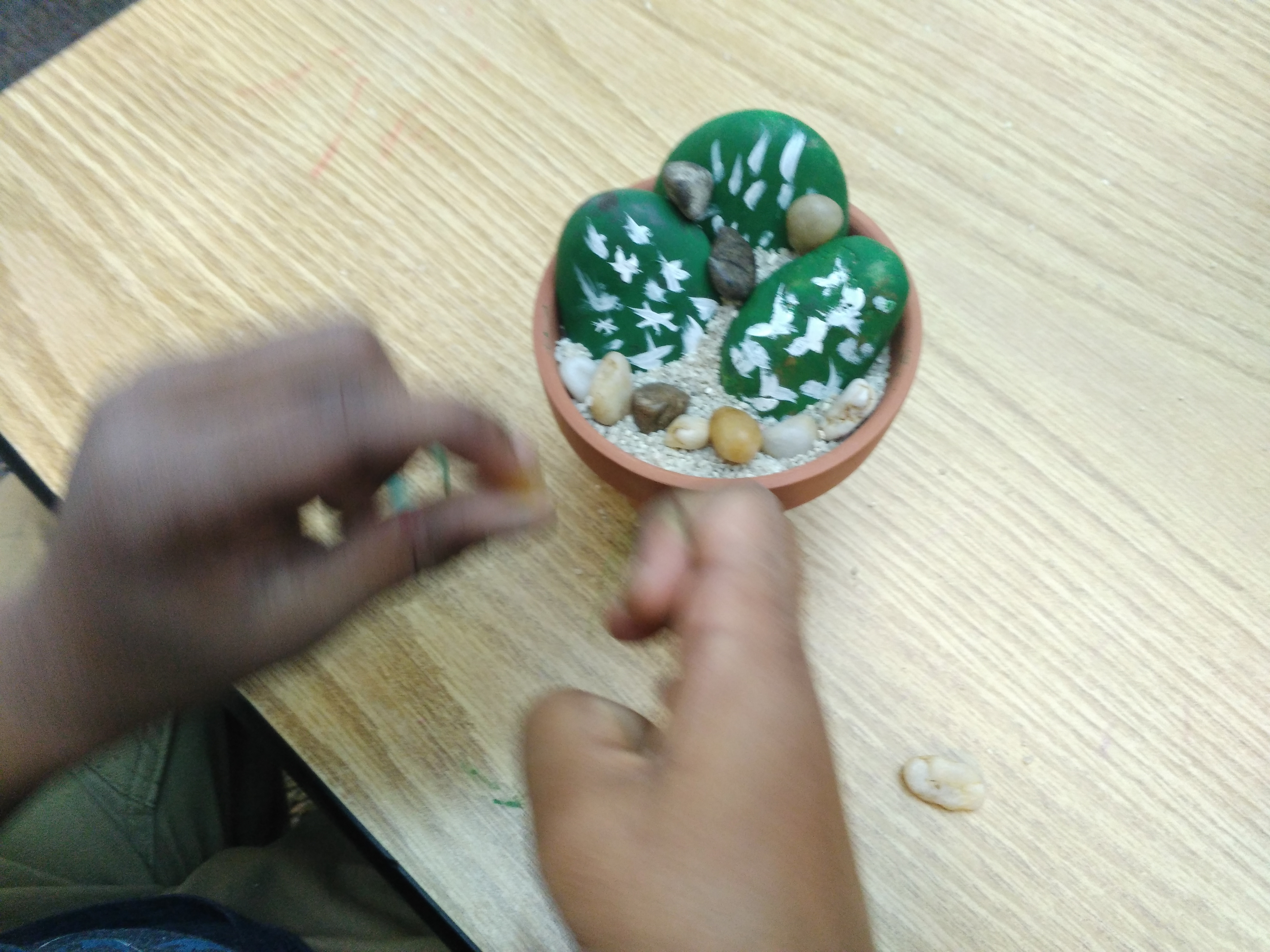 Kids Nature Crafts- Cactus Stones