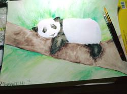 Lazy Panda Painting Class