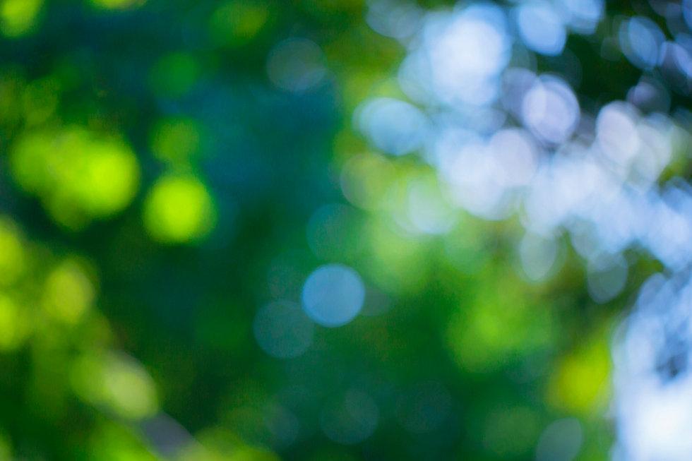 gesundheit-ernaehrung-rosenheim-muenchen
