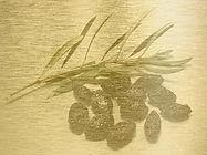 Olivenblatt.jpg