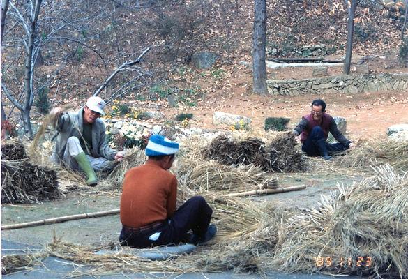 짚으로 구유 지붕을 엮는 마을가족들 모습 (1989년).jpg