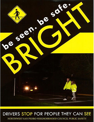 public safety flyer.jpg