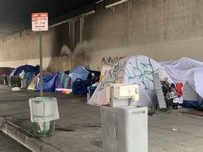 2020 Homeless Count in Del Rey