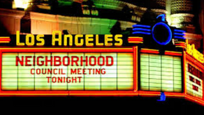 Reaching Out to the Neighborhood Councils