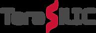 logo_tsic.png