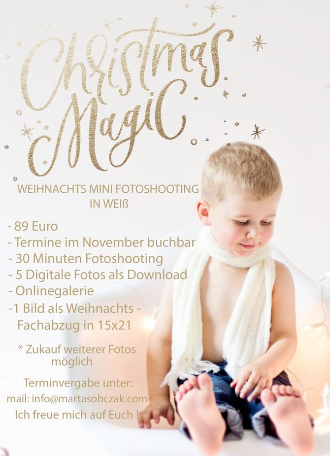 Weihnachts Mini Fotoshooting in Kaiserslautern
