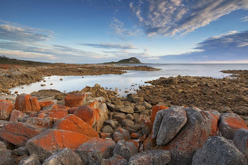 Egg-Beach-Flinders-Island-Tasmania-by-Arwen-Dyer-1024x683