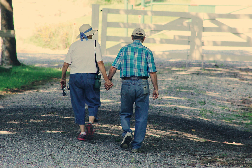 The backs of an elderly white couple walking and holding hands.