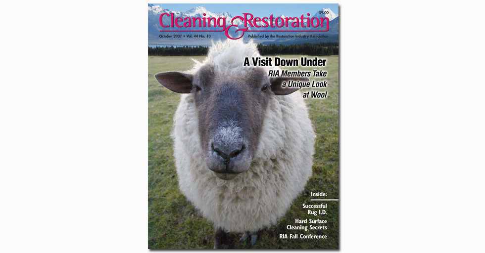 CleaningRestorationSheepCover.jpg