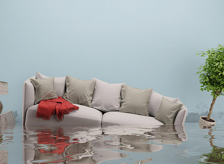 Why You Should Call Water Damage Professional