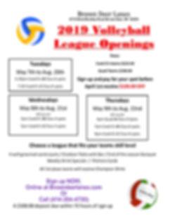 Volleyball 2019.jpg