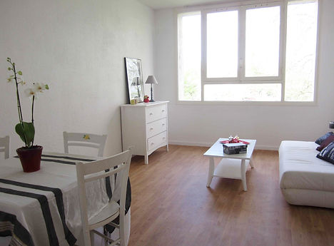 home staging d'un séjour realisé à Mérignac pour vendre plus vite, l'appartement à été meublé avec du mobilier loué par le grain de sel décoration