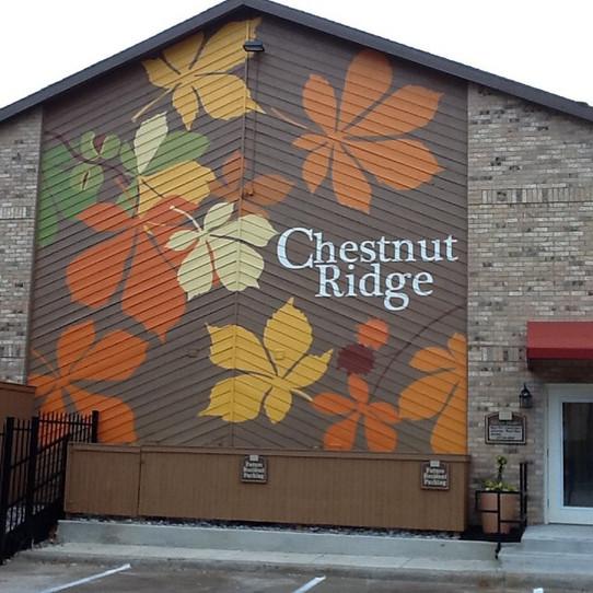 the Chestnut Ridge Mural