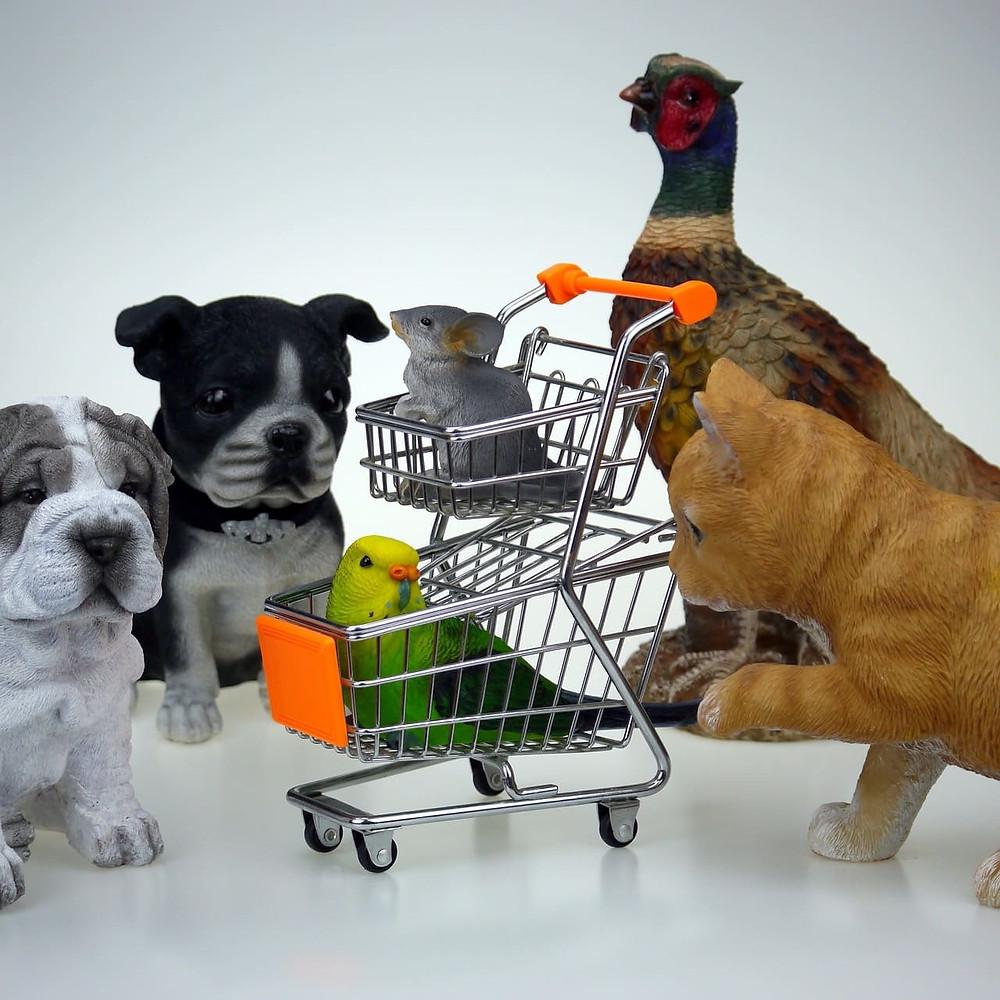как заработать онлайн продавая товары для животных