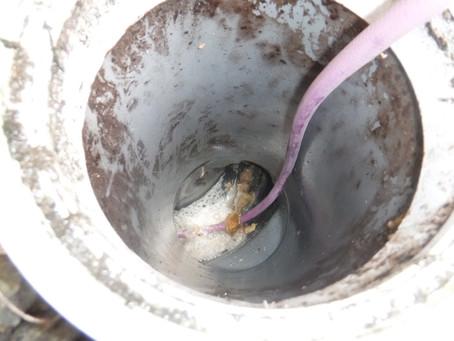 岩手県一戸町で排水管詰りの高圧洗浄を行いました