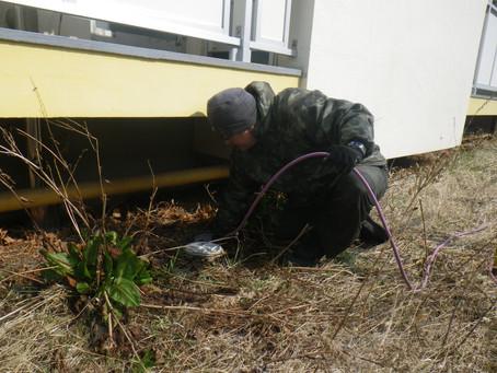 二戸市のマンションの排水詰り高圧洗浄を行いました