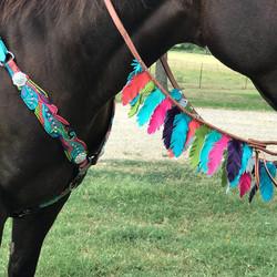 Wild eye ranch multi color