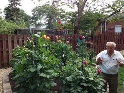 The Hartel Garden