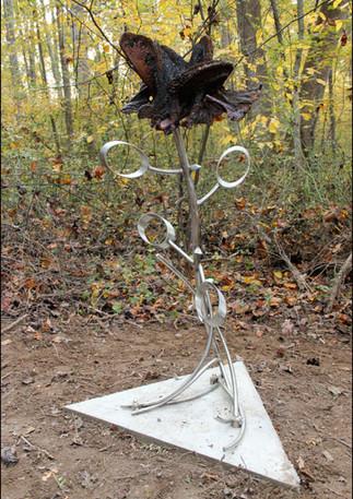 Forrest Rose, by Andrew Marsh (C) 2014 Lucky 7 Arts, LLC
