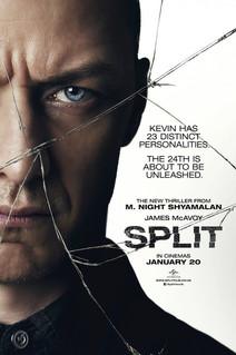 split_ver2_xlg.jpg