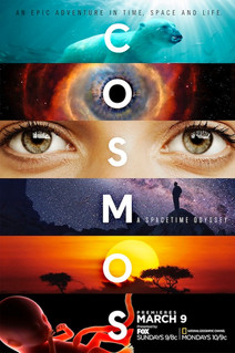 cosmos_s1_1sheet_panels_r15-500x750.jpg