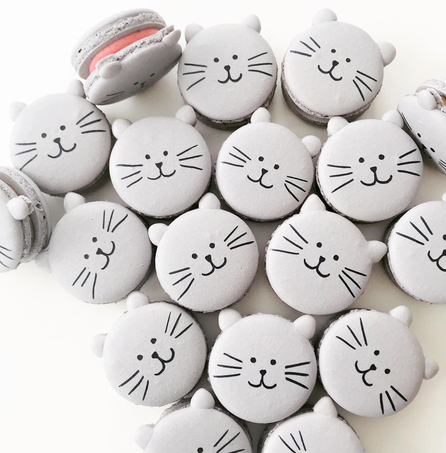 Kitty Cat Macarons