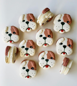 Bulldog Macarons