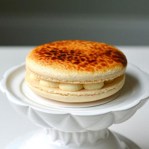 Mini Macaron Cakes (Set of 2)