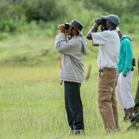 Specialist Birding Course 2014150_2787-7880.jpg