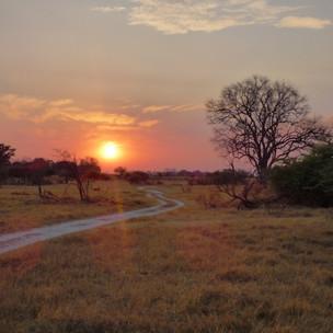 Sunrise at Kwapa Camp