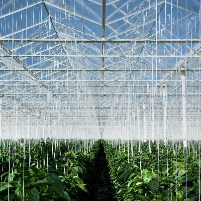 food production linked to global warming