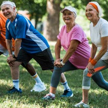Exercise Enhances Aging Brains