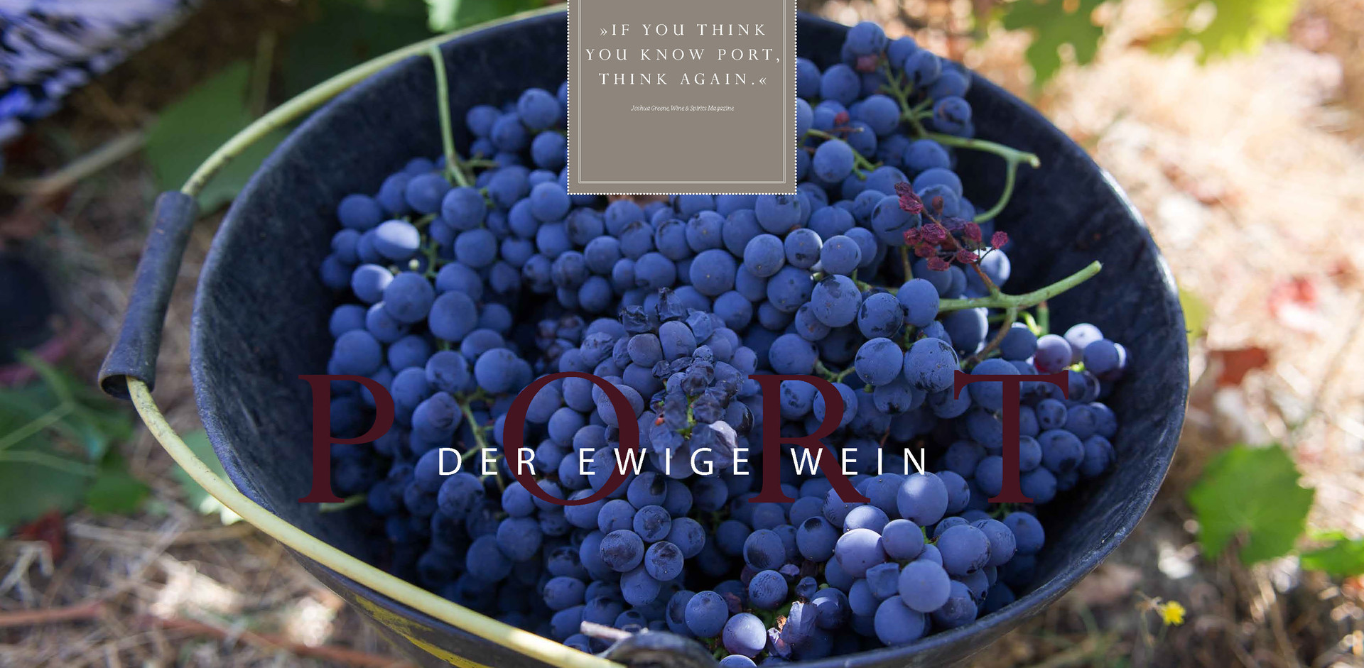 Port – Der ewige Wein