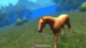 dreamhorse.jpg