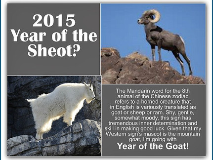 Sheep or Goat? A Good Chinese Astrology Year Ahead for Some