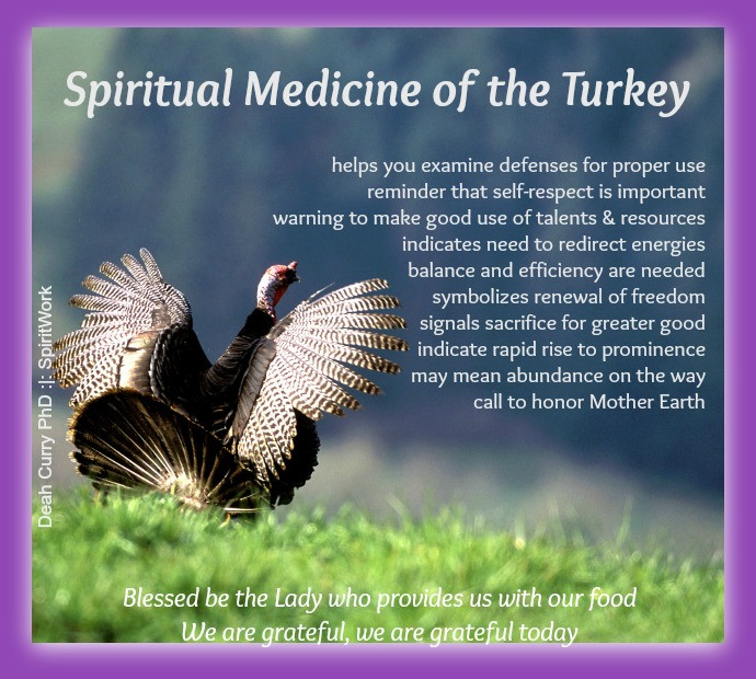 Shamanic, Sacred manner, turkey medicine