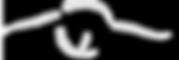 Image of WiseWomanSeer owl in-flight logo