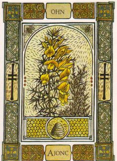 Celtic Tree Oracle -- Furze Card