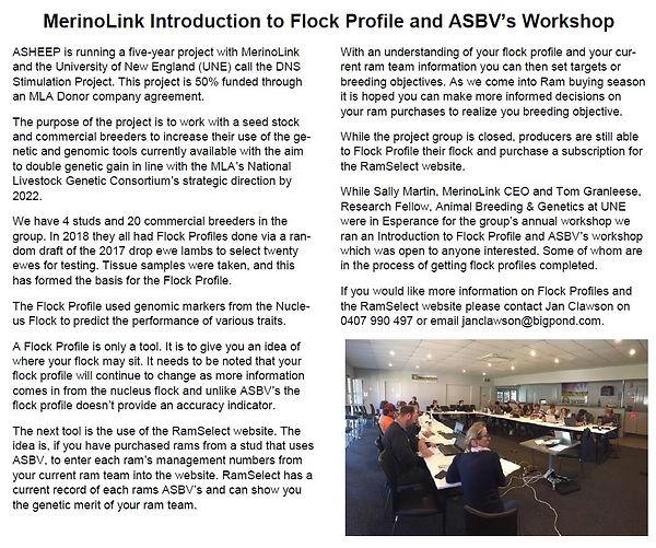 MerinoLink Introduction to Flock Profile