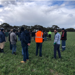 ASHEEP Winter Field Day in review