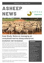 ASHEEP Feb 2020 Newsletter_Page_01.jpg
