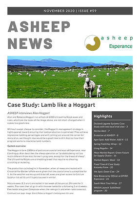 ASHEEP November Newsletter Reduced_Page_