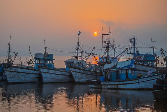 Harbor-5344.jpg