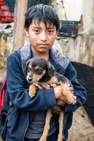 Edelac school child at home with his puppy.