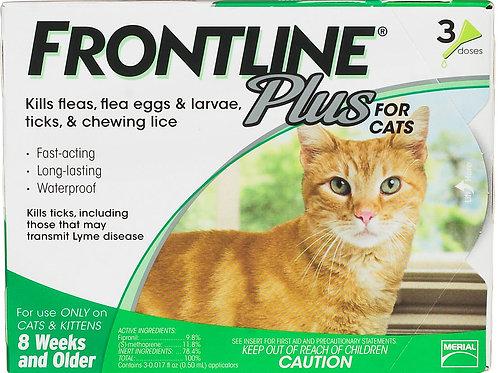 Frontline Cats
