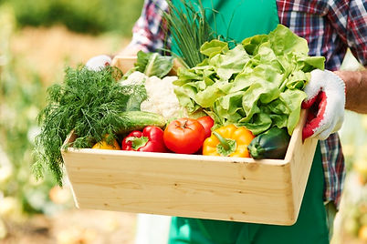 close-up-of-box-with-vegetables-in-hands